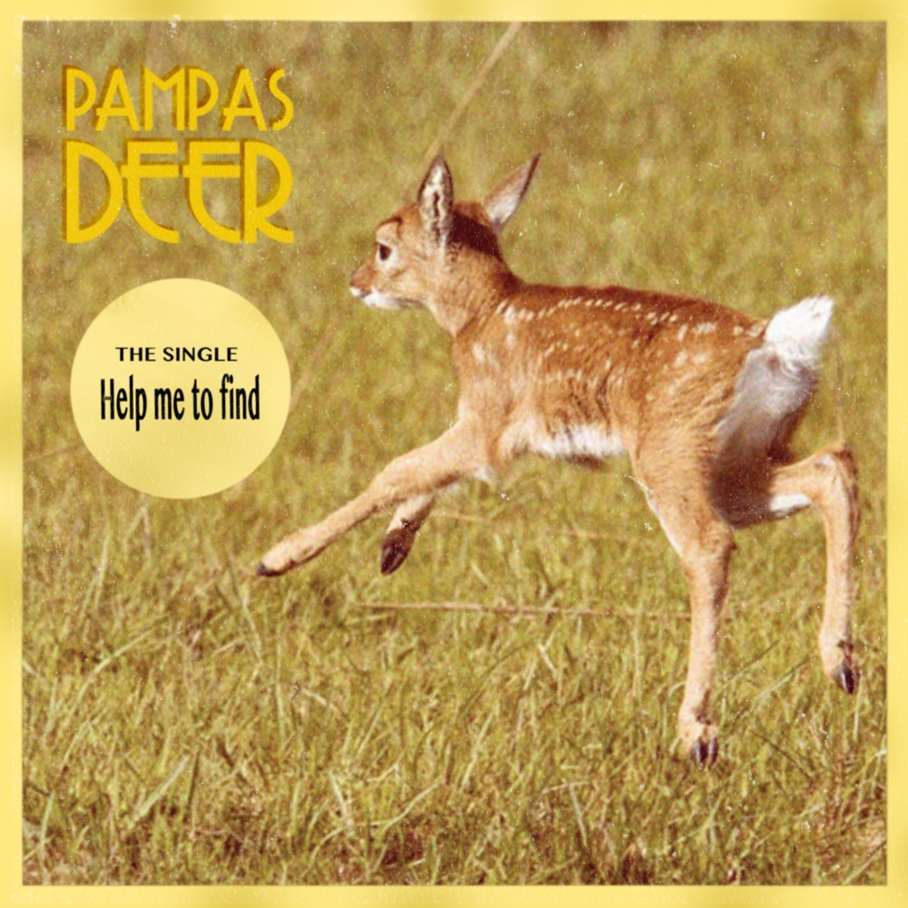 PAMPAS DEER - COVER Help me to Find